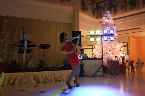 Новогодняя ночь 2014 в гостинице Ирис Конгресс Отель