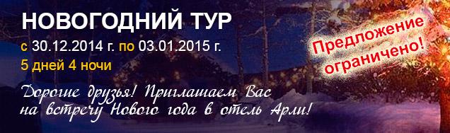 новогодний-тур-2