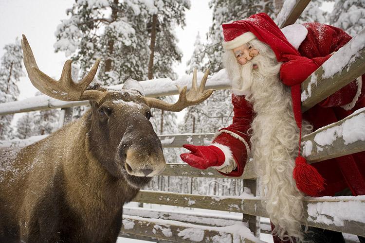 Финские новогодние особенности1