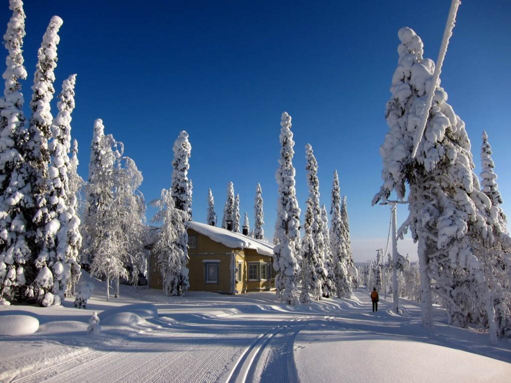 Финские новогодние особенности4