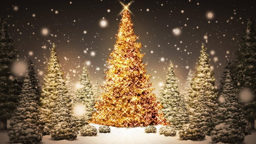 Что мы знаем о Рождестве1