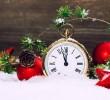 «Ноев Ковчег» приглашает к себе на Старый Новый год