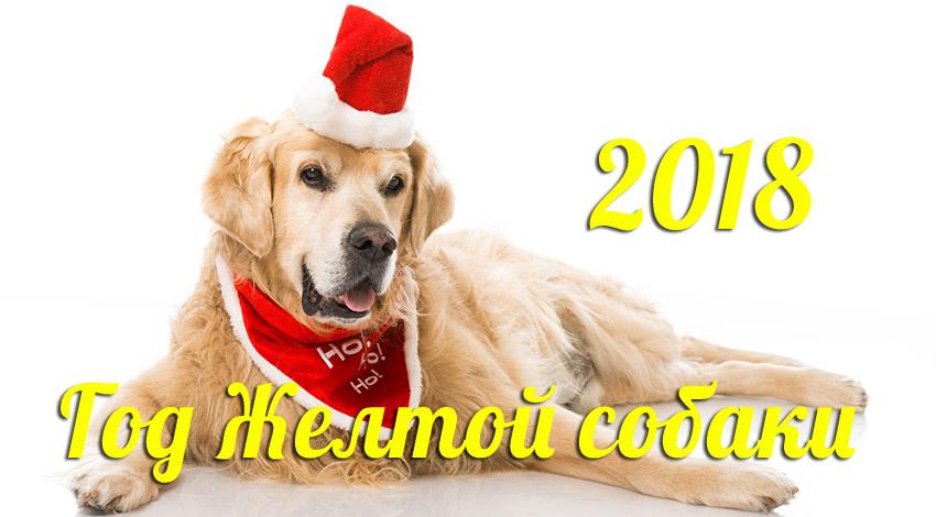 Все об астрологическом символе 2018 года – Желтой Земляной Собаке. Часть 1.