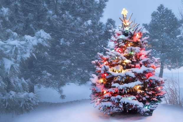 Новый год история возникновения и праздничные традиции разных народов2