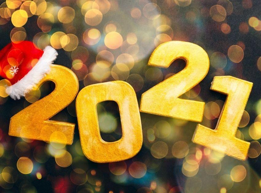 Новый год 2021 в Пансионате «БОР»