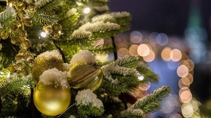 Праздник Новый год: этапы становления, любопытные факты и традиции
